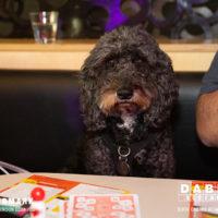 Dabbers_Bingo_Doggie_Bingo 1