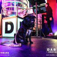 Dabbers_Bingo_Doggie_Bingo 22