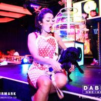 Dabbers_Bingo_Doggie_Bingo 23