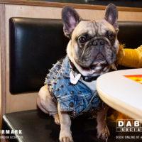 Dabbers_Bingo_Doggie_Bingo 29