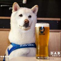 Dabbers_Bingo_Doggie_Bingo 30