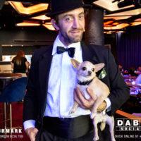 Dabbers_Bingo_Doggie_Bingo 32