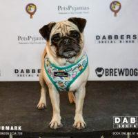 Dabbers_Bingo_Doggie_Bingo 43