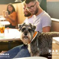 Dabbers_Bingo_Doggie_Bingo 49