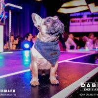 Dabbers_Bingo_Doggie_Bingo 56