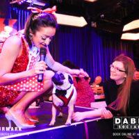 Dabbers_Bingo_Doggie_Bingo 62