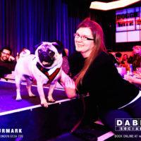 Dabbers_Bingo_Doggie_Bingo 63