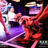 Dabbers_Bingo_Doggie_Bingo 65
