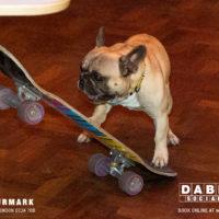 Dabbers_Bingo_Doggie_Bingo 68