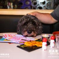 Dabbers_Bingo_Doggie_Bingo 8